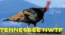 Tennesee NWTF!